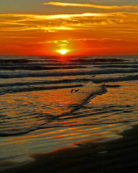 Saint Augustine Beach Wall Art - Photograph - Elegant St. Augustine Sunrise V by Phil King