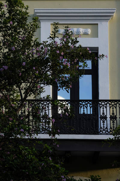 Photograph - Elegant Tropical Balcony - The Beautiful Colonial Architecture Of Old San Juan by Georgia Mizuleva