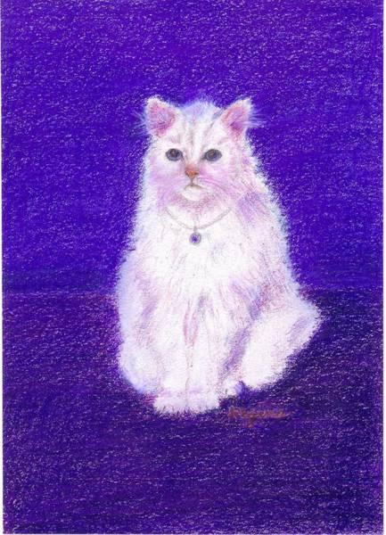 Drawing - Elegant White Cat by Regina Taormino