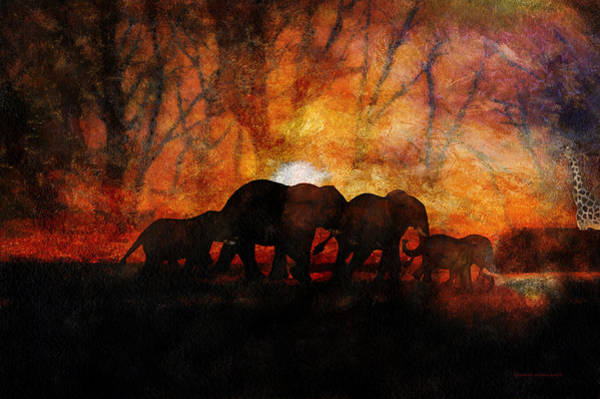 Doona Mixed Media - Elephant Family At Sunset Textured by Thomas Woolworth