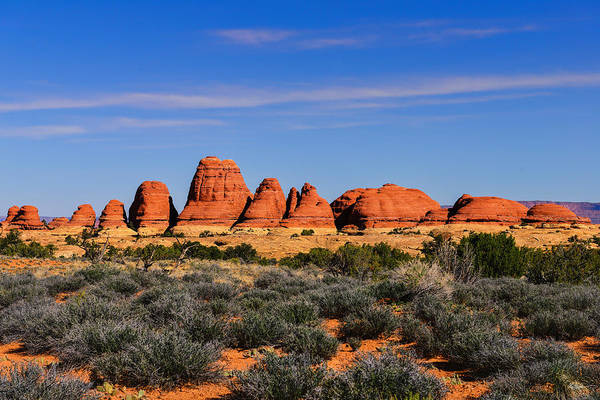 Photograph - Elephant Hill by Greg Norrell