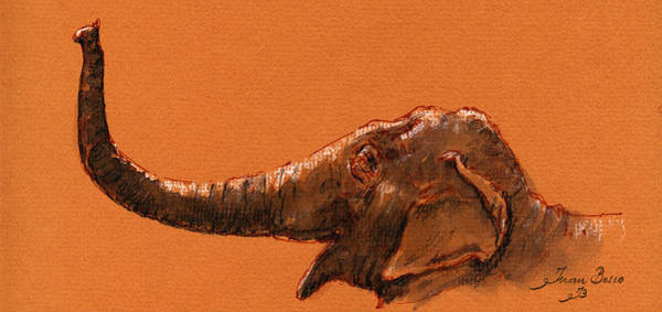 Wall Art - Painting - Elephant Indian by Juan  Bosco