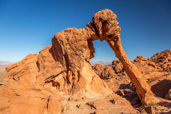 Photograph - Elephant Rock Valley Of Fire by Pierre Leclerc Photography