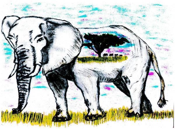 Grey Skies Drawing - Elephant World by Shaunna Juuti