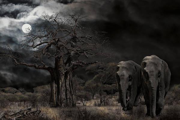 East Africa Digital Art - Elephants Of The Serengeti by Daniel Hagerman