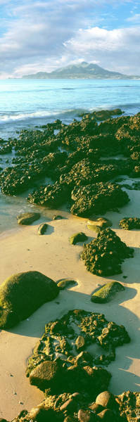Sea Of Cortez Photograph - Elevated View Of Rocks On The Beach by Panoramic Images