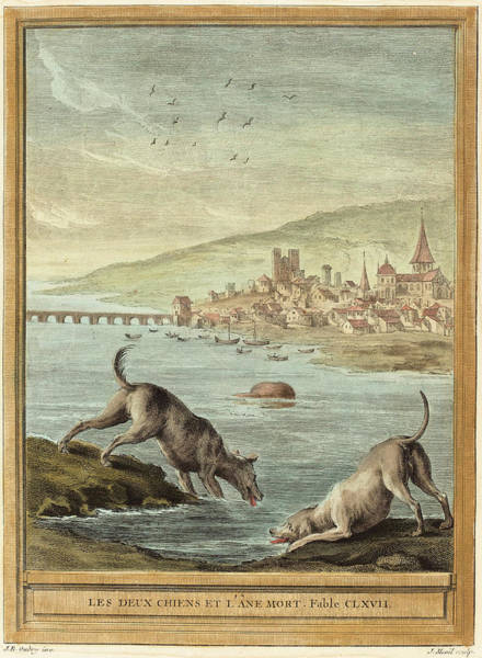 Chien Drawing - Elie Du Mesnil After Jean-baptiste Oudry French by Quint Lox