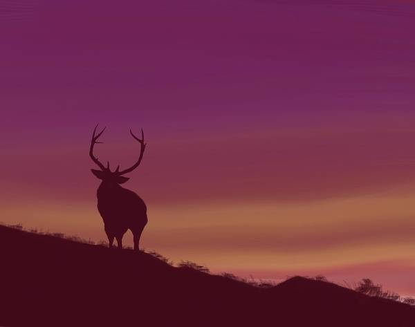 Digital Art - Elk At Dusk by Terry Frederick