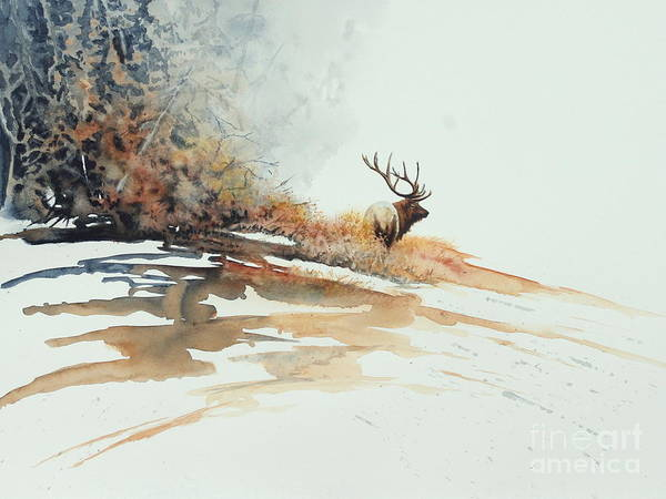 Painting - Elk by Greg and Linda Halom