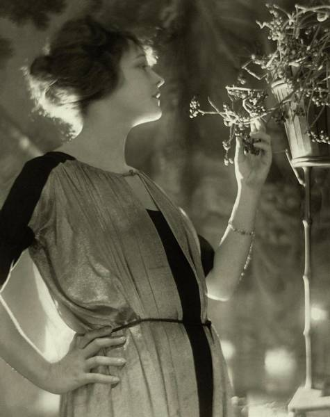 1921 Photograph - Elsie Ferguson With Potted Plant by Adolphe De Meyer