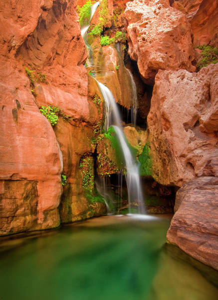Wall Art - Photograph - Elves Chasm Waterfall, Grand Canyon by Josh Miller