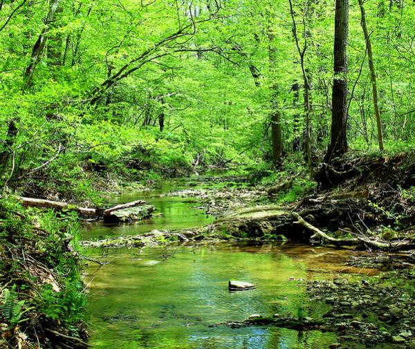 Photograph - Emerald Creek by Candice Trimble