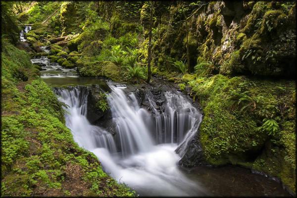 Photograph - Emerald Falls by Erika Fawcett