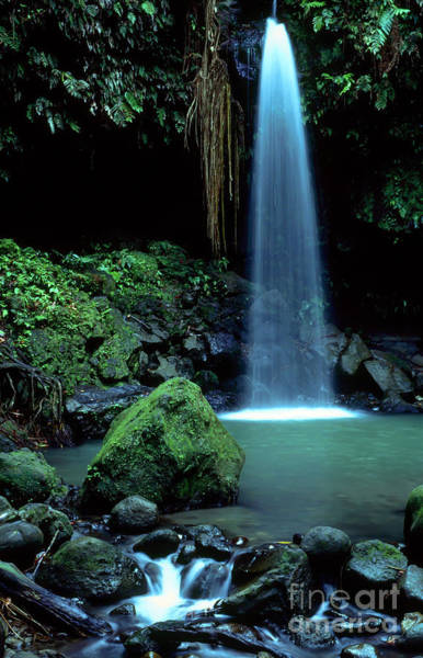 Photograph - Emerald Pool by Thomas R Fletcher