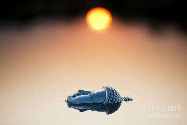 Buddhism Wall Art - Photograph - Emerging Buddha by Tim Gainey