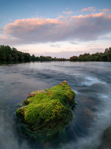 Riverscape Wall Art - Photograph - Emerging by Davorin Mance
