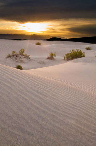 Great Sand Dunes National Park Photograph - Emerging Light by Photograph By Quan Yuan