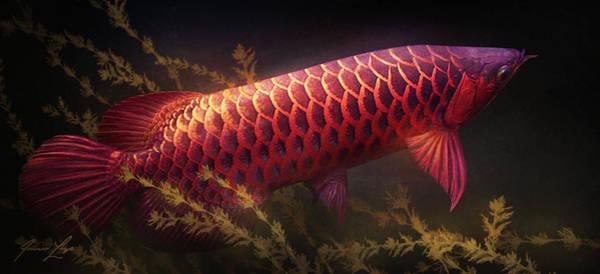 Water Plant Digital Art - Emerging Red by Javier Lazo