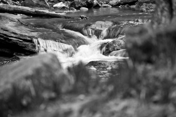 Photograph - Emerling Gorge Stream Wat 277 by G L Sarti