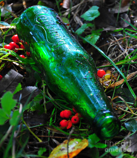 Photograph - Empty Bottle by Randi Grace Nilsberg