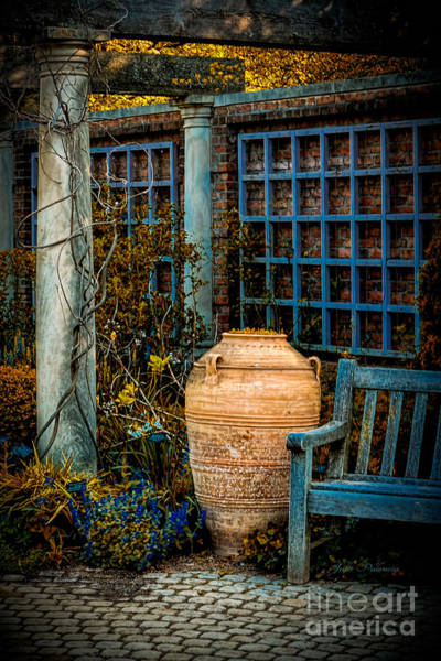 Photograph - Empty Garden by Julie Palencia