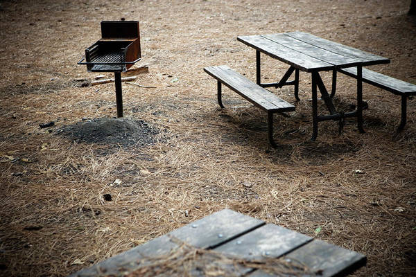Barbeque Photograph - Empty Picnic Tables And Barbeque by Ron Koeberer