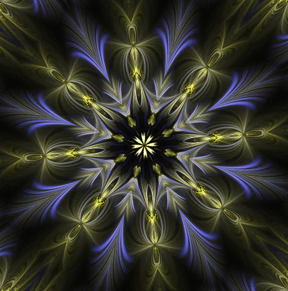 Digital Art - Enamored Mandala by Barbara A Lane