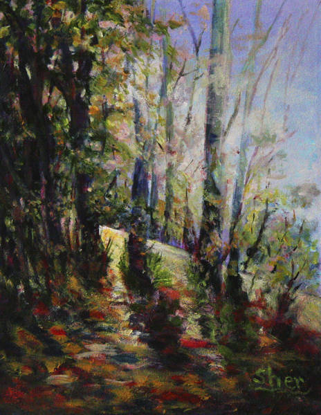 Painting - Enchanted Forest by Sher Nasser