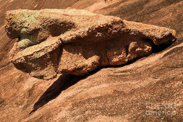 Enchanted Rock State Park Photograph - Enchanted Wing Suit by Adam Jewell