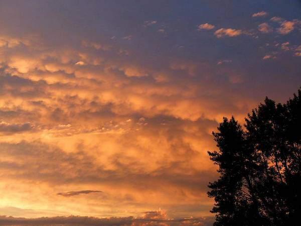 End Of Summer Photograph - End Of Day Drama by Will Borden