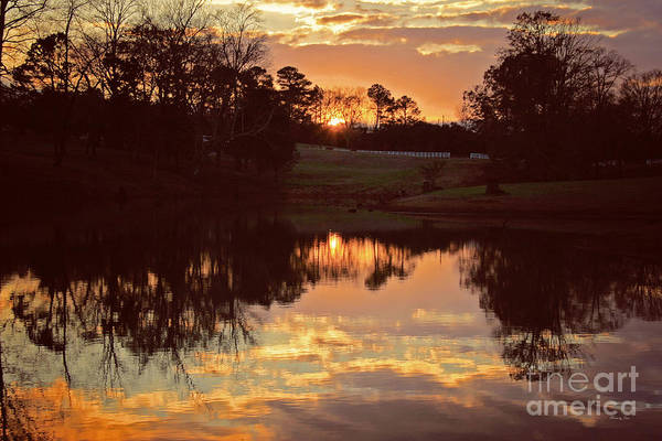Wall Art - Photograph - End Of Day by Jinx Farmer
