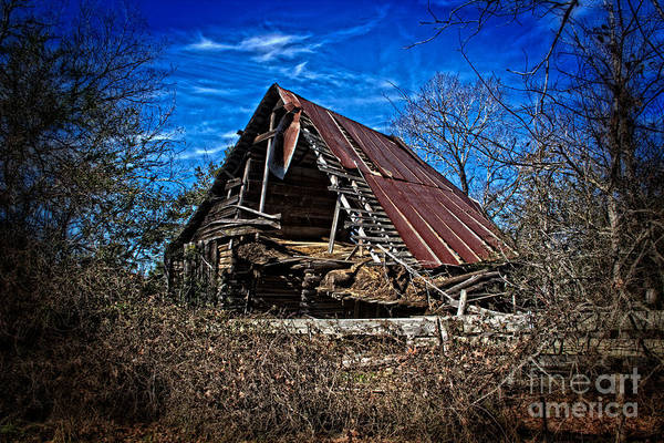 Photograph - End Of Days by Jim McCain