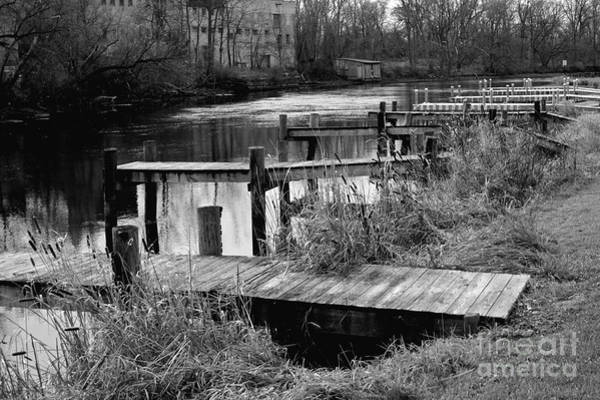 Photograph - End Of Season by William Norton