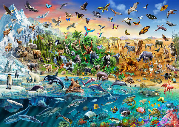 Mountain Lion Digital Art - Endangered Species by MGL Meiklejohn Graphics Licensing
