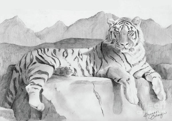 White Tiger Drawing - Endangered Species - Tiger by Suzanne Schaefer