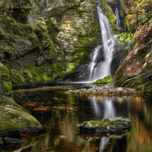 Mossy Photograph - Enders Falls by Bill Wakeley