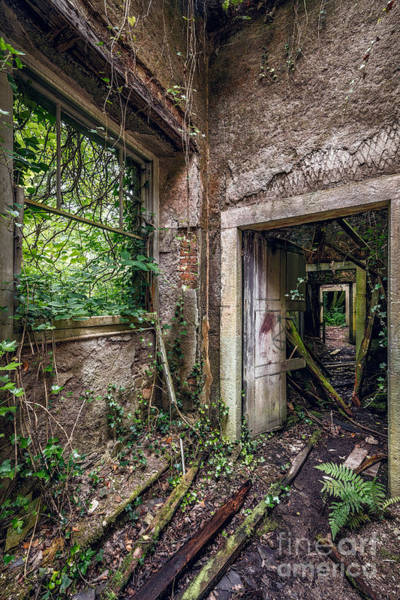 Abandonment Photograph - Endless Decay by Adrian Evans