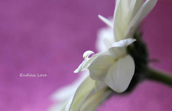 Saying Photograph - Endless Love by Krissy Katsimbras