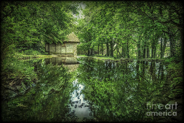 Country House Photograph - Endless Shades Of Green by Evelina Kremsdorf