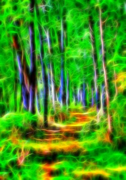 Wall Art - Digital Art - Energy Of The Forest by Dan Sproul