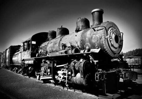 Photograph - Engine 1215 by Mick Burkey