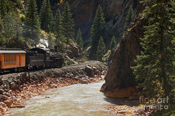 Photograph - Engine 481 By The Animas River On The Durango And Silverton Narrow Gauge Railroad by Fred Stearns