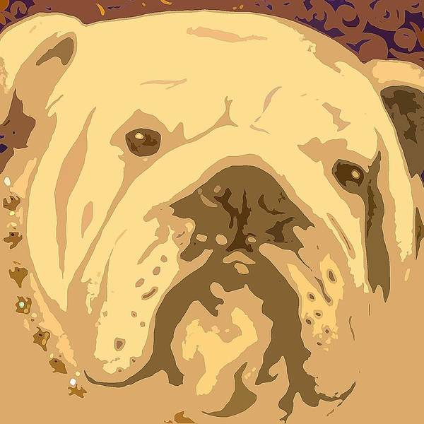 Painting - English Bully by Holly Picano
