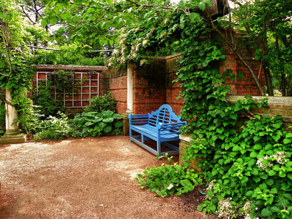 Photograph - English Garden by Julie Palencia