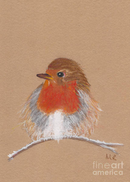Flycatcher Painting - English Robin II by Michelle Reeve