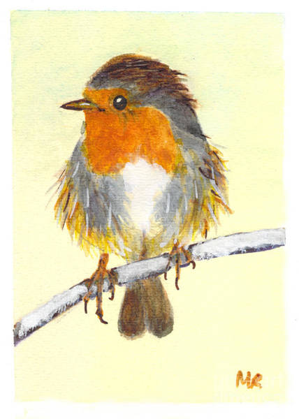 Flycatcher Painting - English Robin by Michelle Reeve