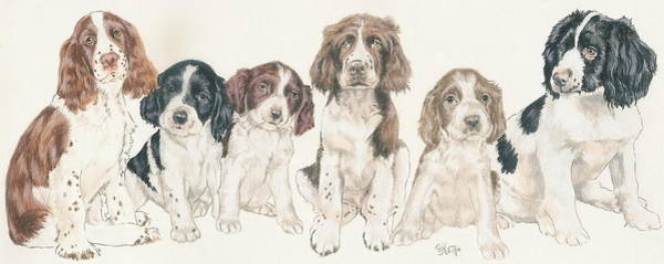 Wall Art - Mixed Media - English Springer Spaniel Puppies by Barbara Keith