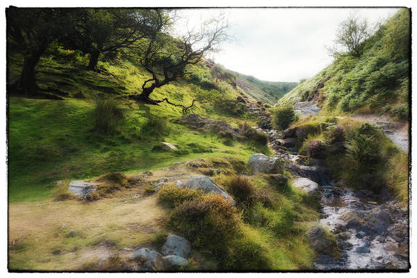 Church Stretton Wall Art - Photograph - English Summer by Peter Acs