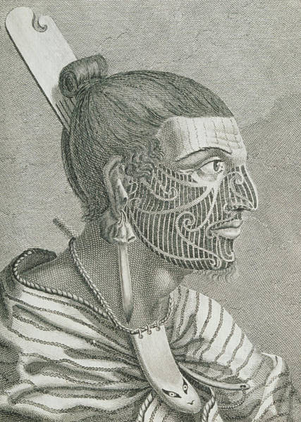 Wall Art - Photograph - Engraving Of A Maori by George Bernard/science Photo Library