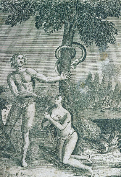 Adam And Eve Wall Art - Photograph - Engraving Of Adam And Eve In The Garden Of Eden by George Bernard/science Photo Library